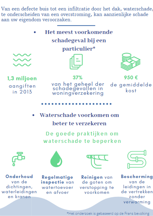 Infographic IMW waterschade