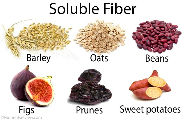 Image result for soluble fibre