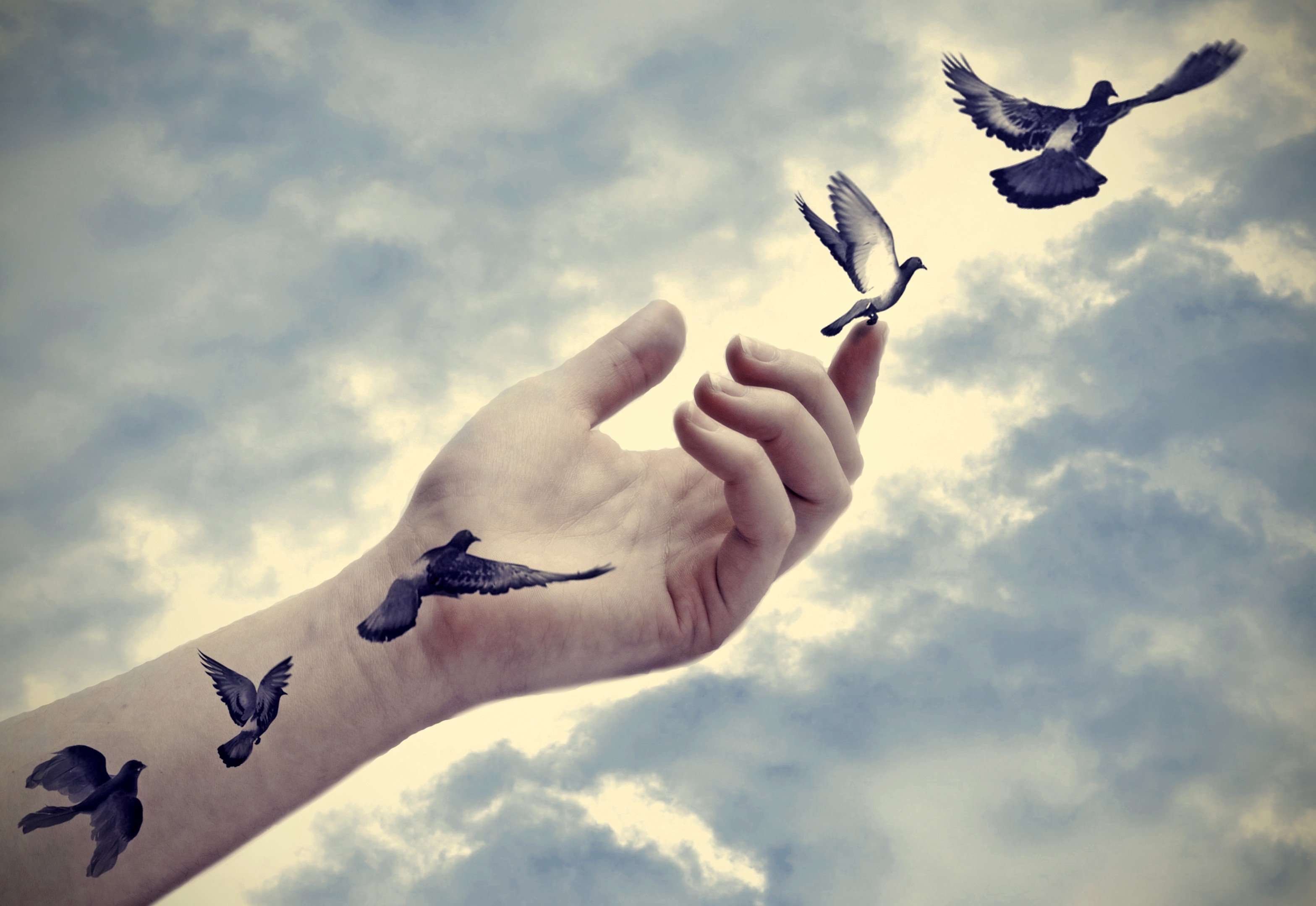 The Freedom in Letting Go. I had a group of friends over the other… | by Mike Patterson | The Ascent | Medium