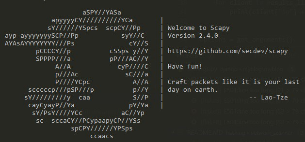 Simple Network Scanner with Python and Scapy - Maksym