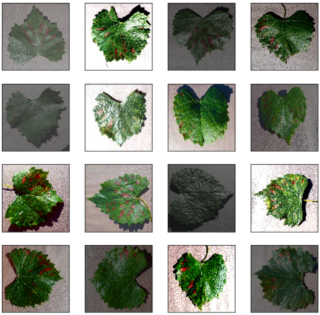 Introduction to Image Augmentation in Python