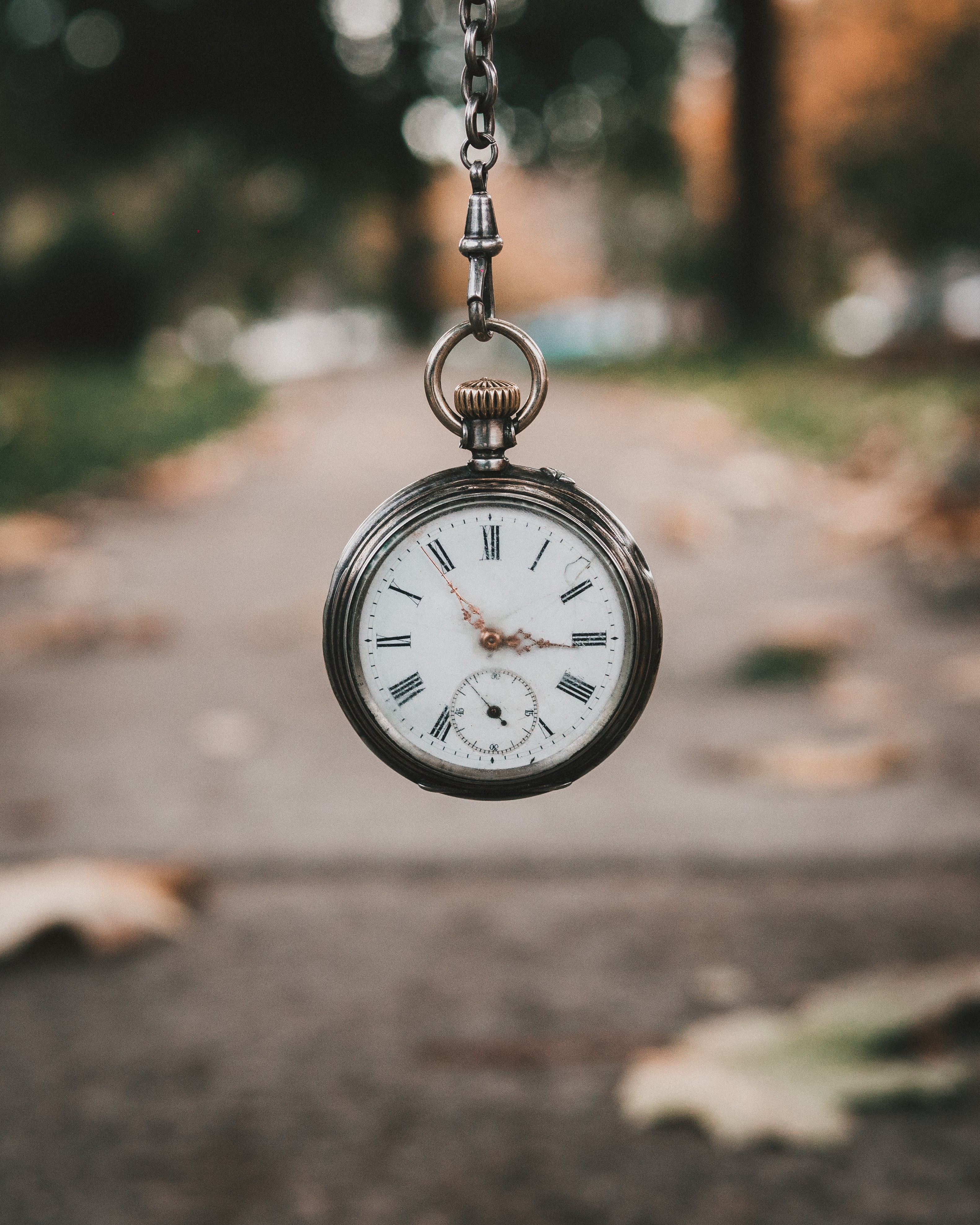 Antique timepiece set against a fall background
