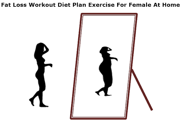 Fat Loss Workout Healthcare Diet Plan Exercise For Female At