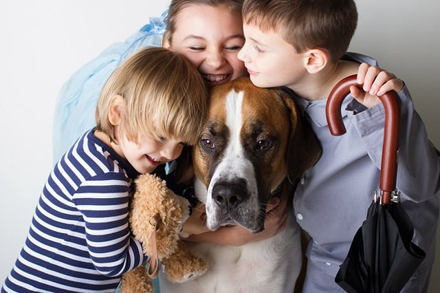 Pets : Top 10 Best Dogs Breeds for Your Kids