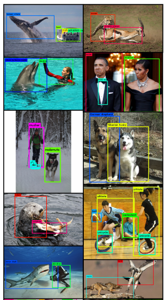 Improving Real-Time Object Detection with YOLO - Stats and Bots