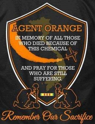 Agent Orange Patch In Memory of All Those who Died because of this Chemical and pray for those still suffering