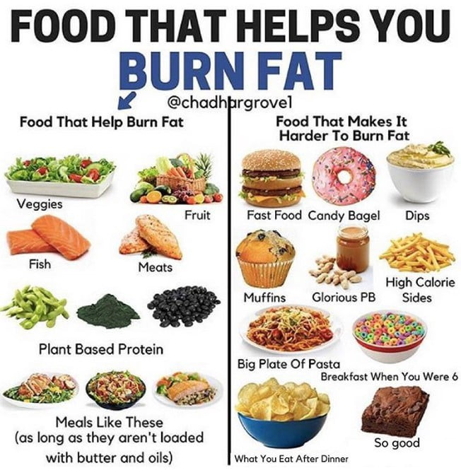 The 14 Best Ways To Burn Fat Fast By Sarmceuticals Medium