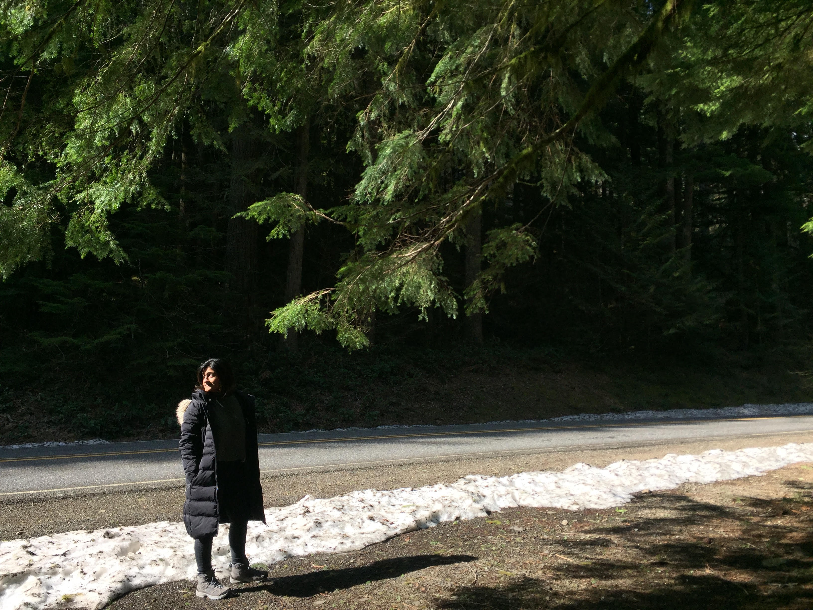 A woman stands on the side of the road with snow nearby, with the branches of an evergreen tree above her.