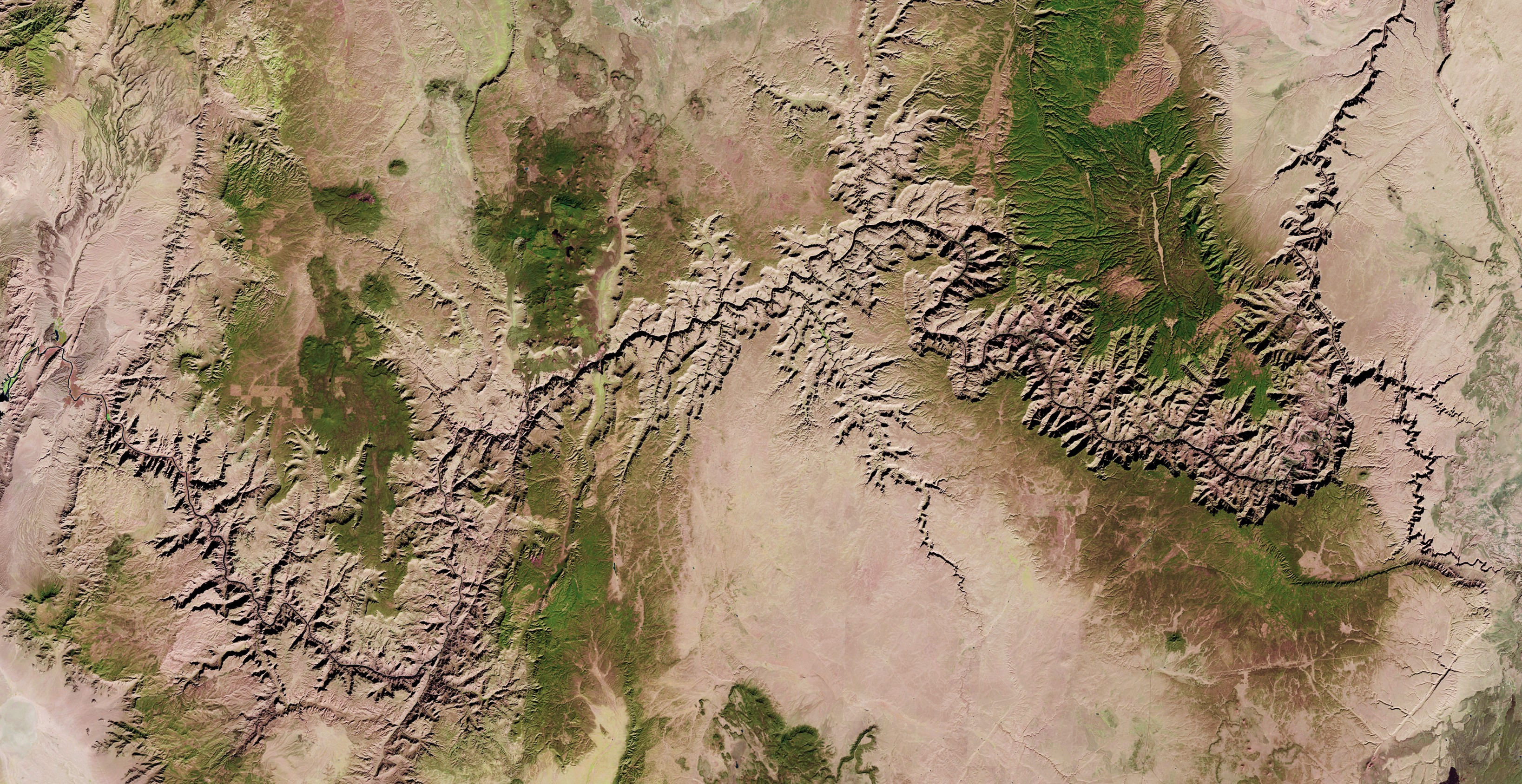 A satellite image of the Grand Canyon taken by Landsat 8.