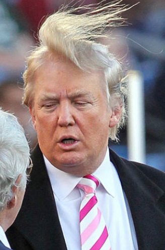""""""" The president needs a new hairstylist """" look"""