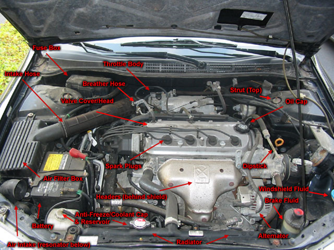 Beginner U2019s Guide To Body Parts Under The Hood Of Your Car