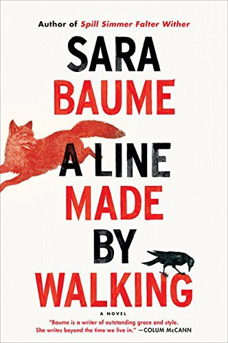 Sara Baume—A Line Made By Walking book review