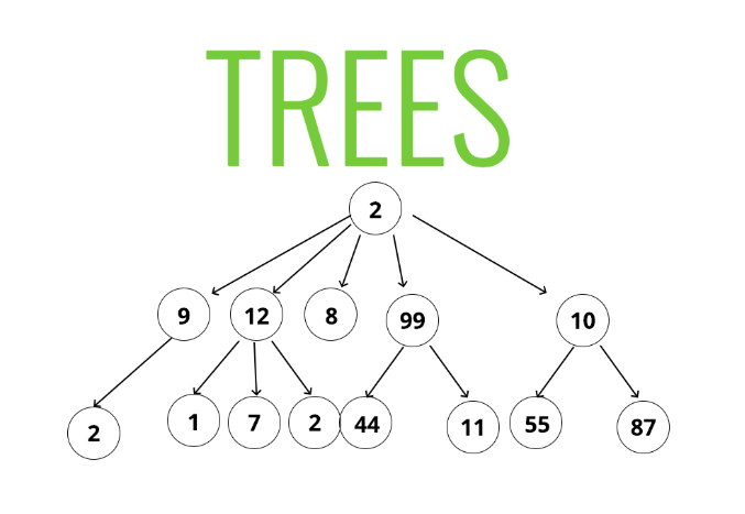 Working With Trees. Trees are a hierarchical data structure… | by Michael  Verdi | Medium