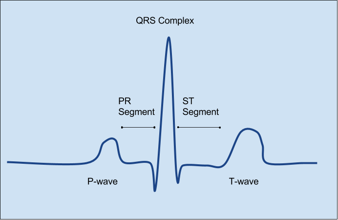 Principal Components of Electrocardiograms - Andrew Tan - Medium