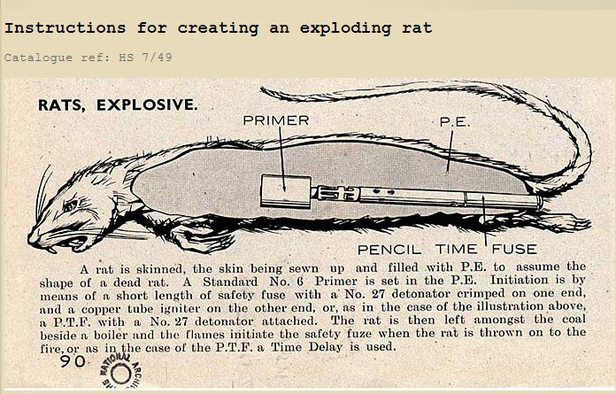 Explosive Rats And Other Inspirations For James Bond