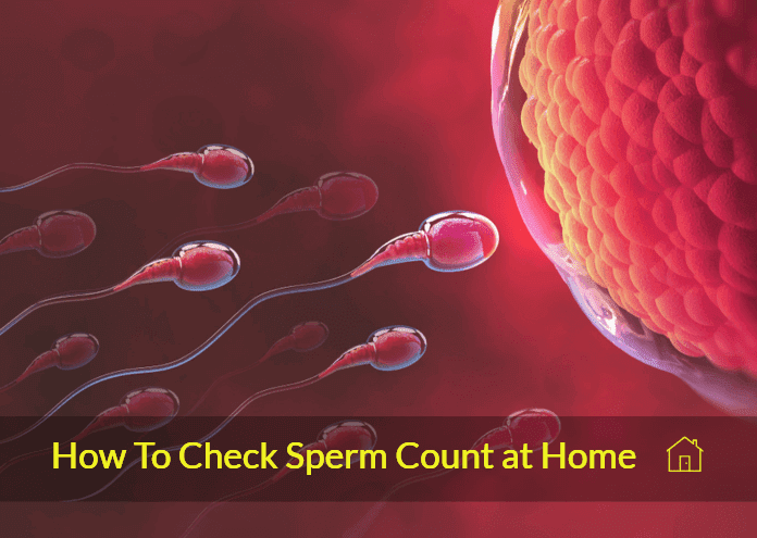 Ways To Check Sperm Count In The Privacy Of Your Home