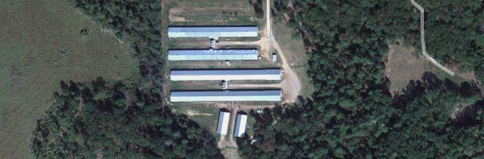 Google Satellite Image of my family's farm