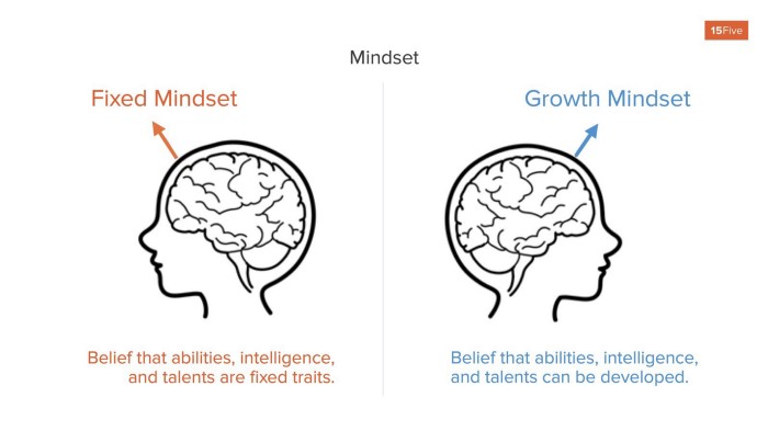 Differences between a fixed mindset and a growth mindset