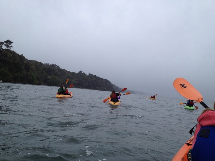 kayaking Tomales Bay by Sylvia Miller Mutia