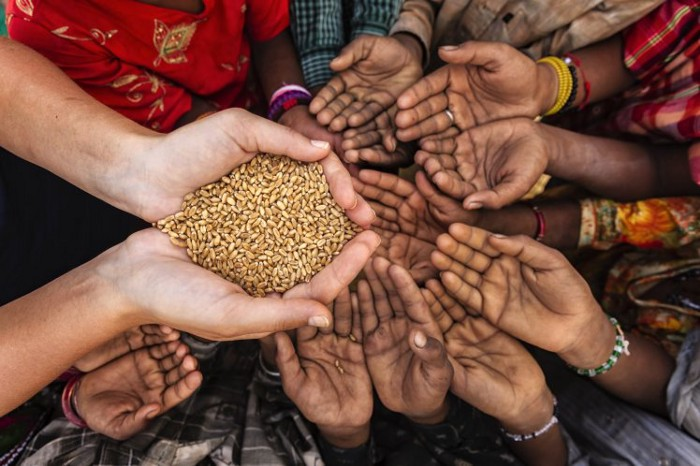 Lack of food supplies to feed the affected population and others across the country leads to a major food crisis. National Security