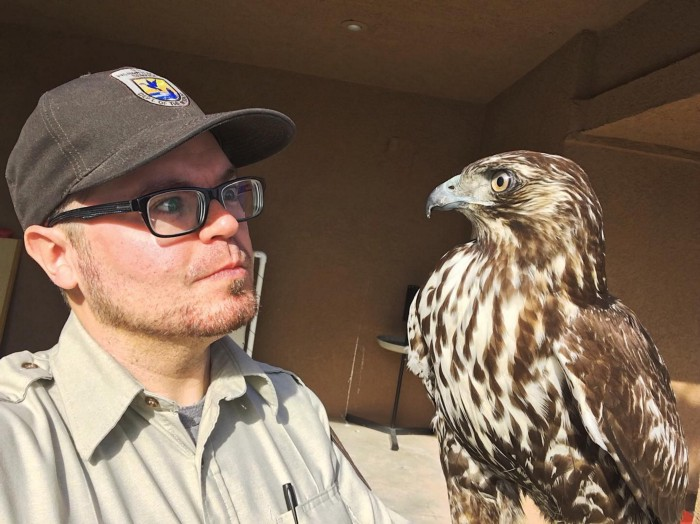 a man and a falcon looking at each other