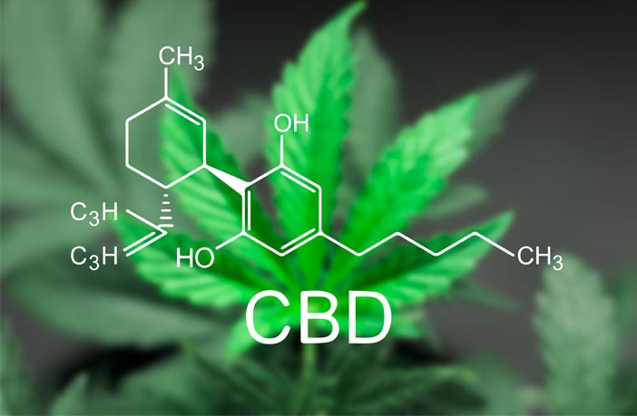 Could CBD be a Replacement for Serotonin? - LeafBulb - Medium