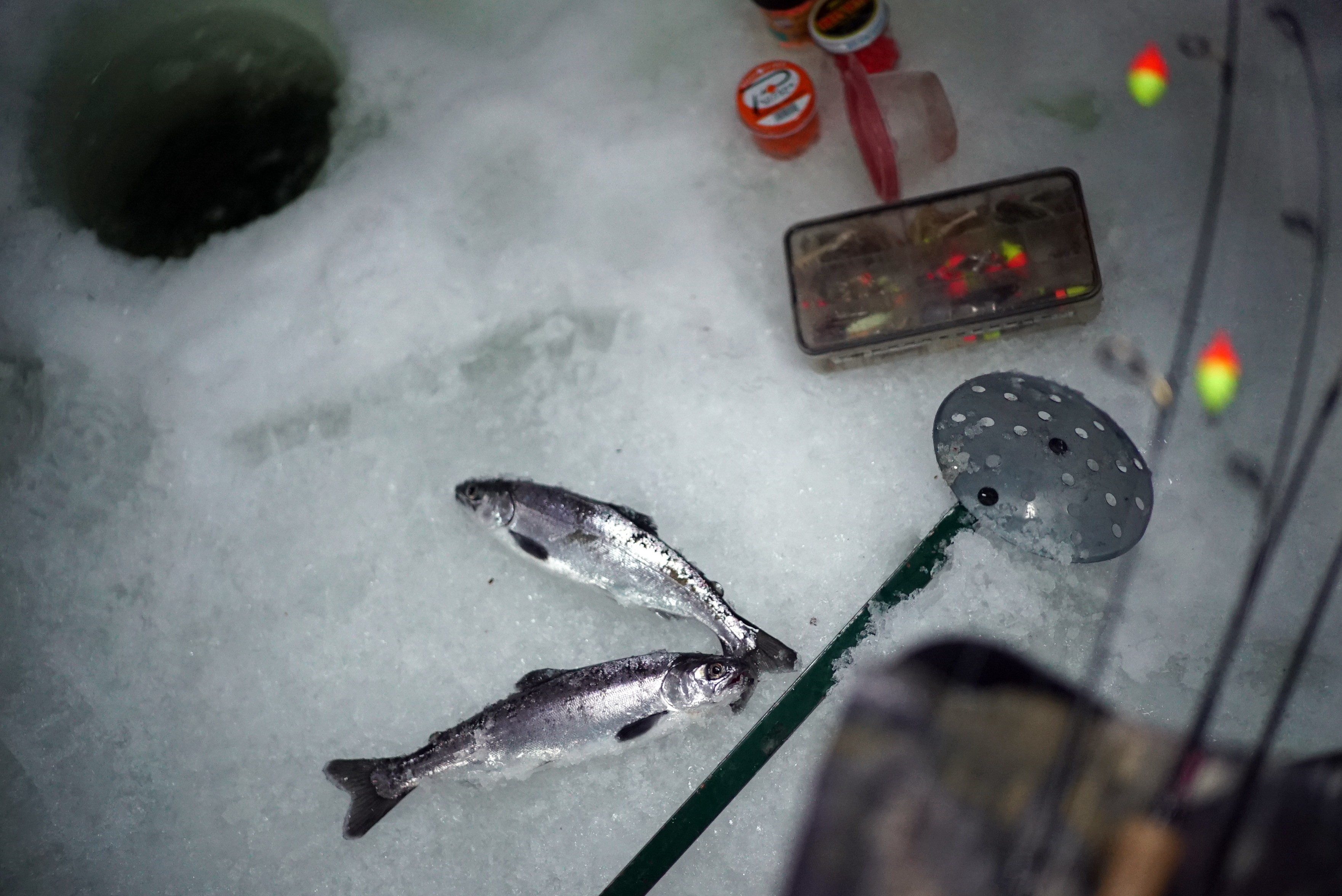 ice fishing gear next to a hole with 2 fish