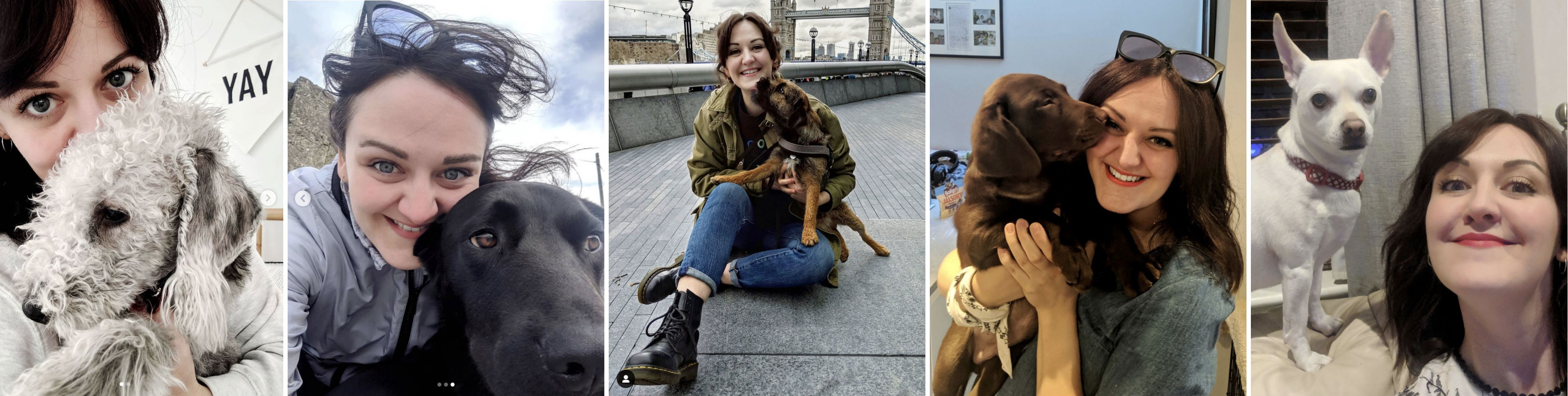 Photos of me hugging lots of different dogs