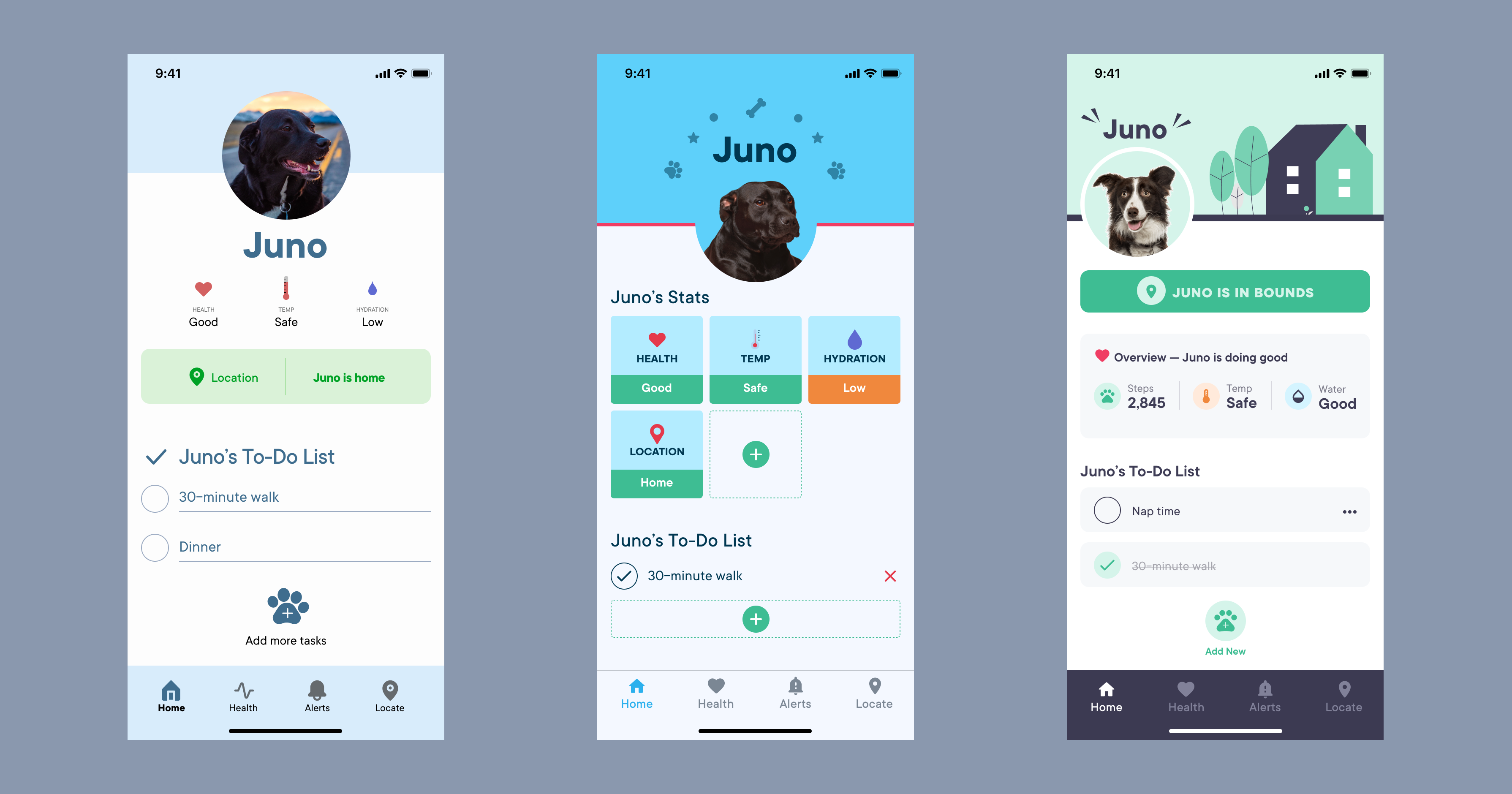 Three screen mockups depicting design iterations over time. The mockups portray an electric dog collar app for a dog named Juno.