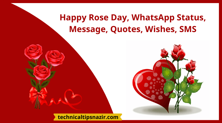 happy rose day whatsapp status message quotes wishes sms