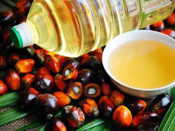 Kermit Highfield Says—Substitute of Soybean Oil