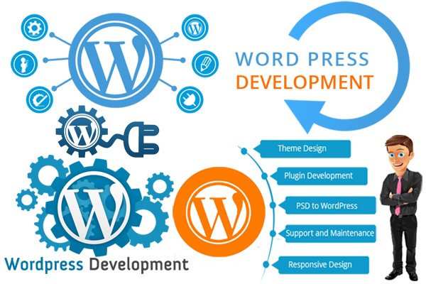 Image result for WordPress Development Service