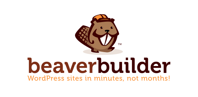 Beaver Builder  Install These 5 WordPress Plugin To Make Your Landing Page Credible & Powerful 1  zKR7g4ZWkt61j6Gb9uwqQ