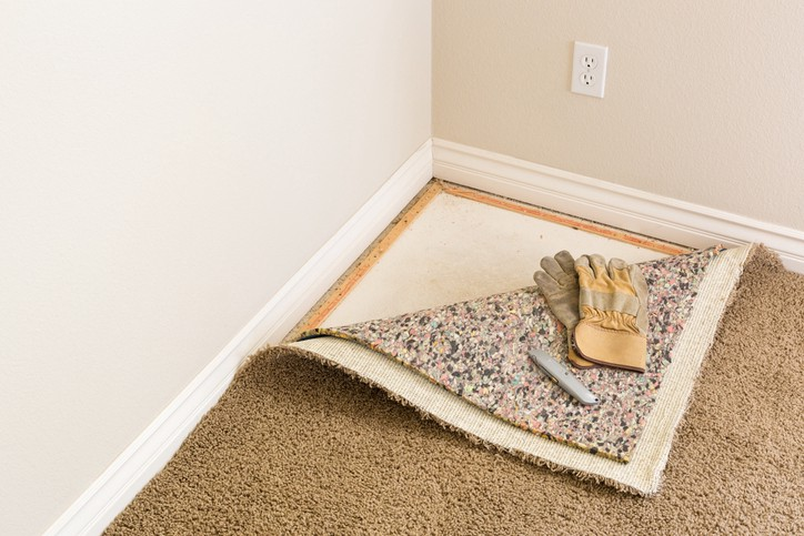 Is Wall To Carpeting Back Rules