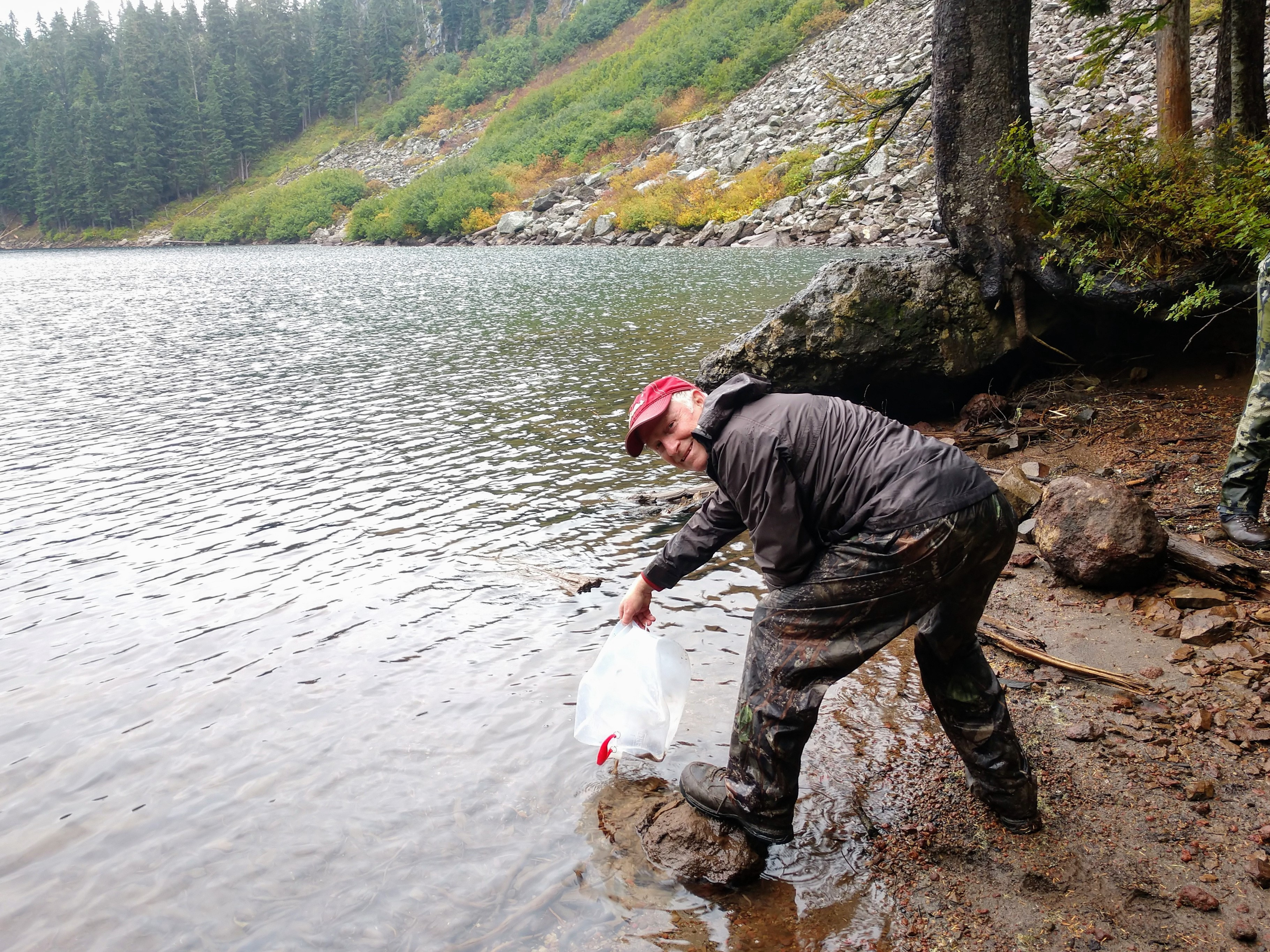Man wearing rain gear pouring water and trout fry from a bag into the lake.