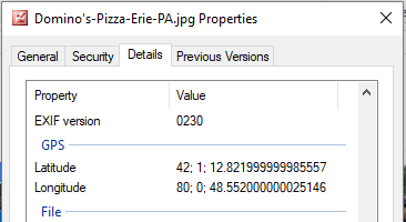 Latitude and Longitude of Domino's Pizza in Erie, PA