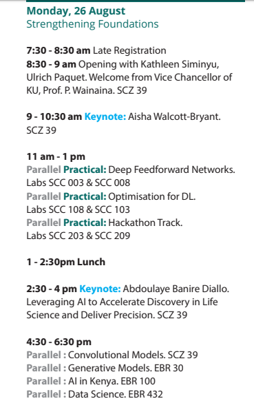 Want a look into the Africa Deep Learning Indaba 2019?