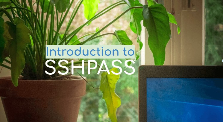 Execute Commands on Remote Machines using sshpass