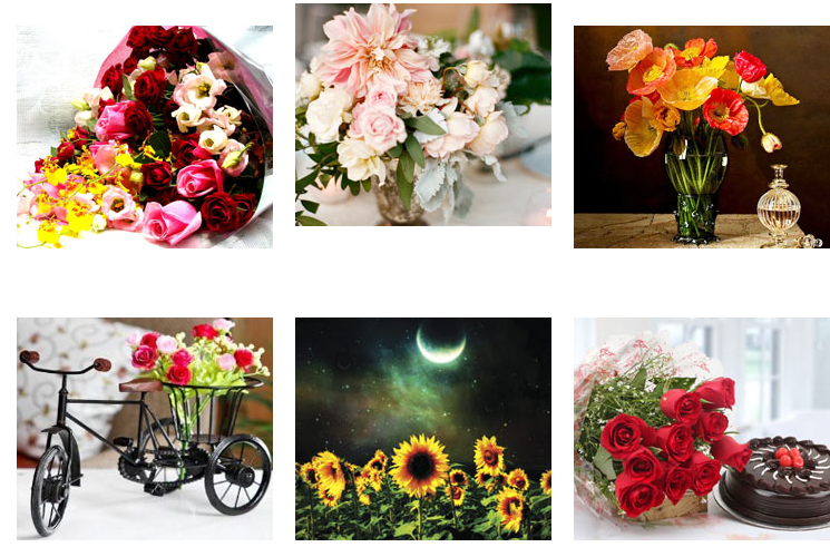 Types Of Bouquet Filler Flowers Use The Information While