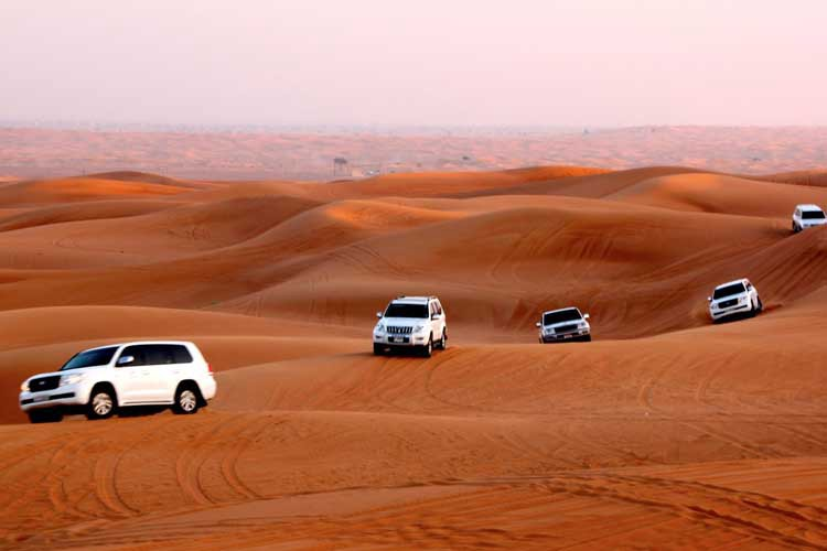 the second help for evening desert safari quotes writer medium