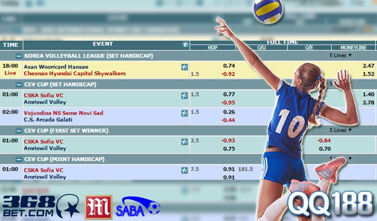 Volleyball betting proline sports betting tickets