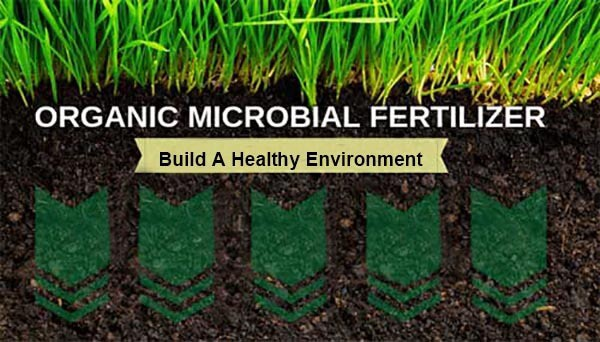 best lawn ?bio fertilizer