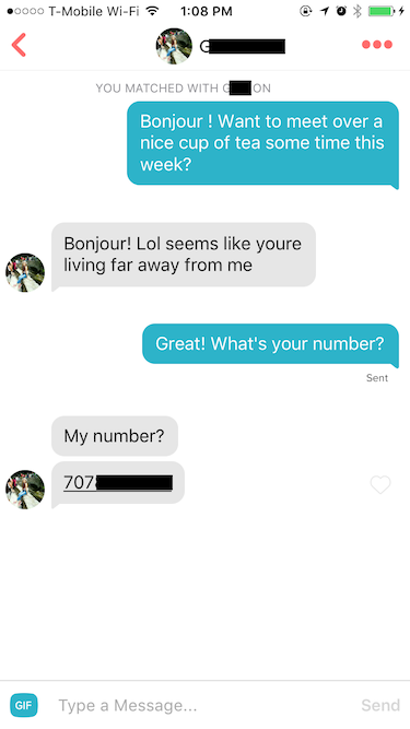 Double your dating online book