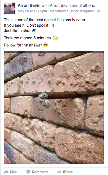 Another Brick in the Wall & other reasons you should stop