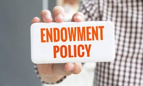 Image result for ENDOWMENT ASSURANCE