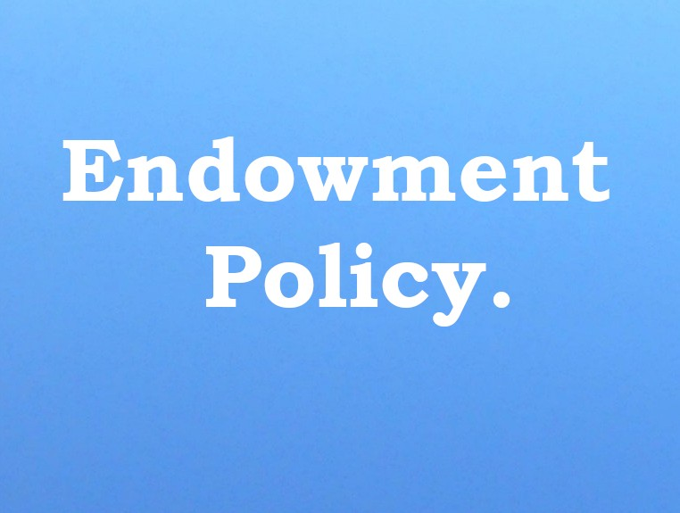 Image result for endowment policy