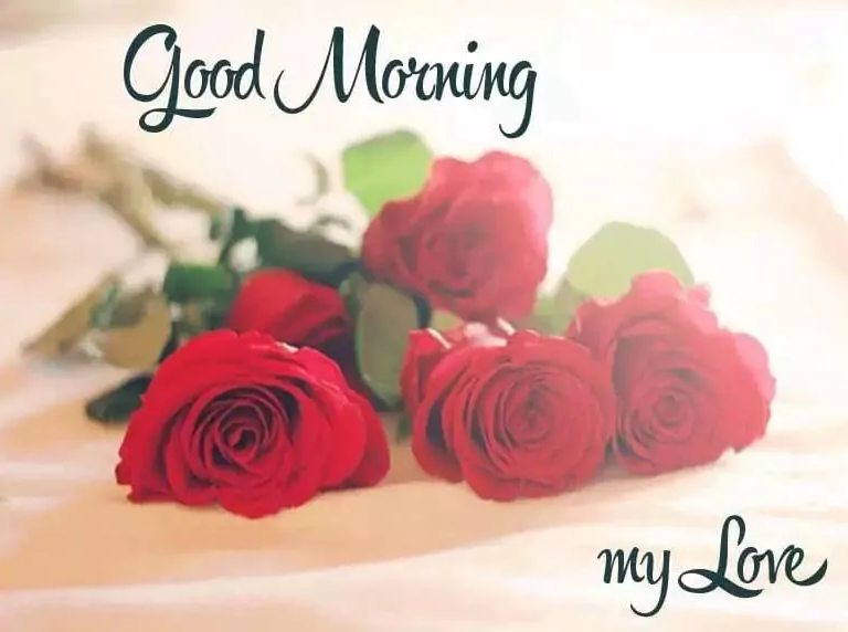 Romantic Good Morning Messages A Morning That Begins With A Wish From By Robert Rpsay Medium
