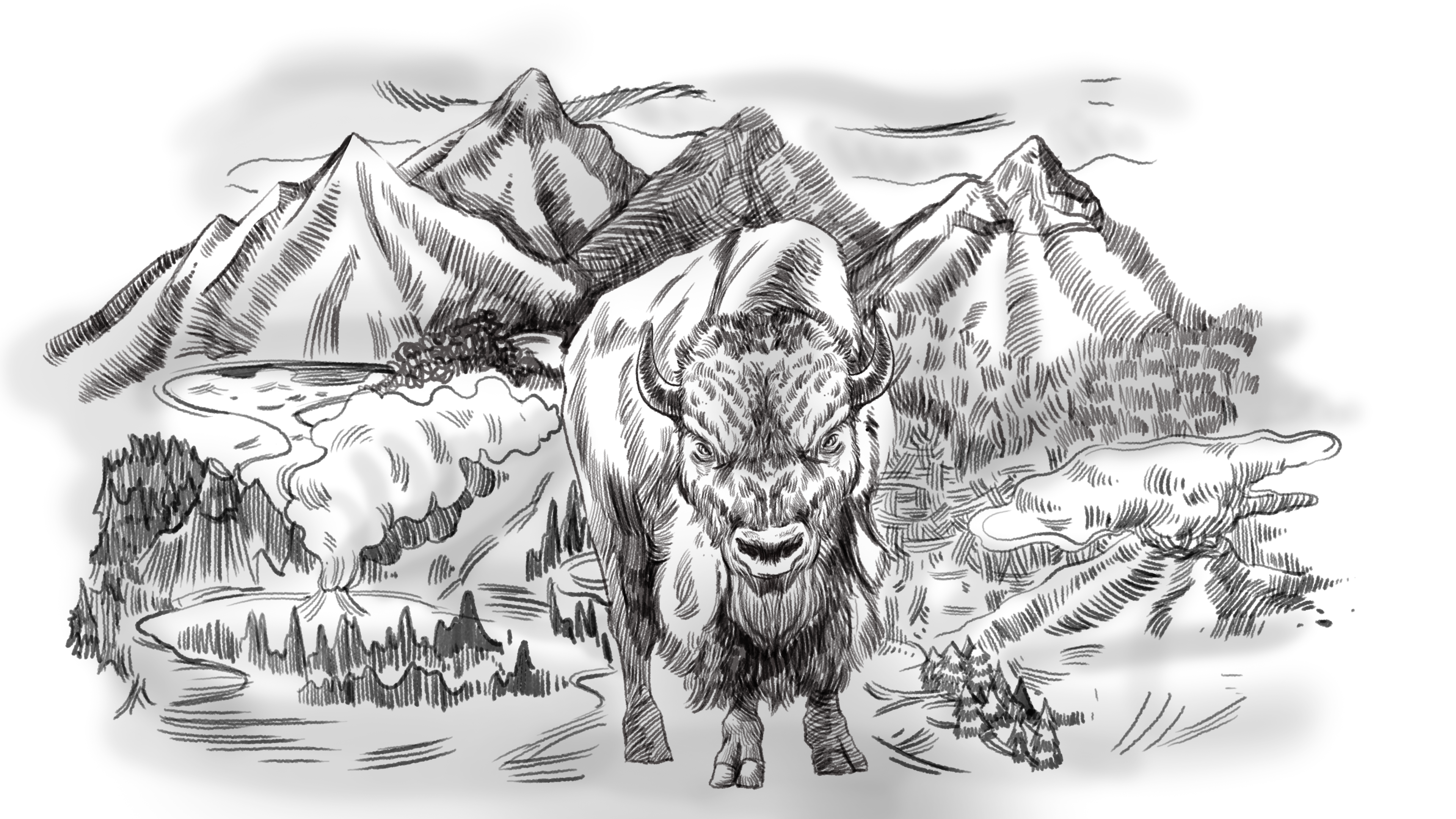 A pencil-style illustration of Raúl, the angry male bison, set against a stylized version of Yellowstone National park