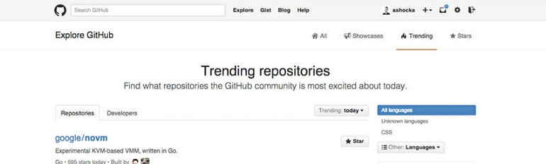 Github's clean interface isn't rich in graphics and full of explanatory text.