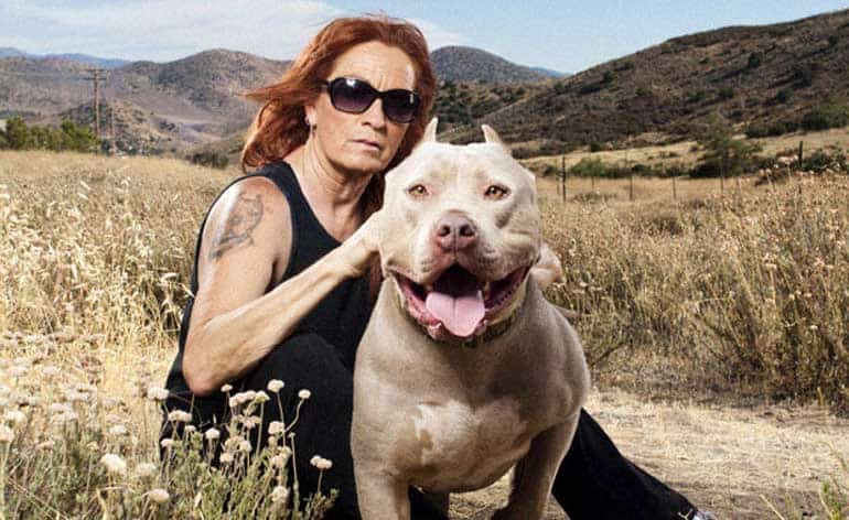 Full Hd Pit Bulls And Parolees Season 16 Eps 7 Online 2020 Free By Pit Bulls And Parolees S16e7 Exclusive Sep 2020 Medium